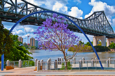 Story Bridge Through Arch and Jacaranda